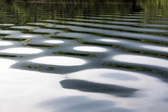 Ripples on reflections