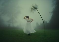 Ebb and Flow (Deltalex.) Tags: fog portrait selfportrait girl woman alexbenetel grass view mountain conceptual fineartphotography ballerina dancer dance flower green nikond600