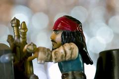 Jack Sparrow (Pioppo67) Tags: macromondays bokeh canon 80d sigma105