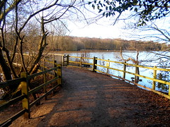 Rufford Park (kelvin mann) Tags: lake ruffordcountrypark rufford ruffordpark nottinghamshire outdoors park water bridge