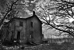 insidious... (BillsExplorations) Tags: insidious treacherous dangerous abandoned abandonedillinois abandonedhouse decay ruraldecay forgotten stonehouse neglect rural country scary blackandwhite monochrome tree