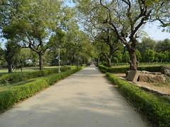 Path at Sun Temple, Modhera, Gujarat, India. (Manoo Mistry) Tags: india gujarat modhera suntemple suryamandir historical history hindutemple hinduism trees path footpath nikon nikoncoolpixl120 bridgecamera