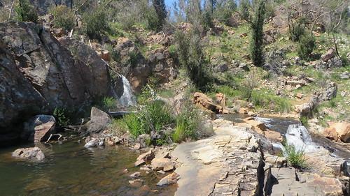 Bretti Reserve