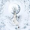 Linden tree, snow (DankSpangle) Tags: canon1dsmarkiii canonef24mm28 panorama