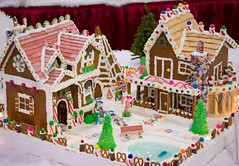 by the pond (raspberrytart) Tags: festivaloftrees christmas gingerbread gingerbreadhouse gingerbreadcookie cookie candy decorating nikon d7100
