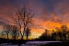 Brucia il cielo nel tramonto (iLaura_) Tags: sunset fire clouds sky trees tramonto cielodifuoco nuvole alberi inverno winter
