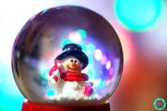 MERRY CHRISTMAS 🎄 (NadzNidzPhotography) Tags: mondays freetheme 7dwf depthoffield dof christmas merrychristmas nadznidzphotography macromondays memberschoicebokeh bokeh snowman