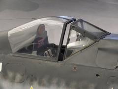 "Focke Wulf FW.190 F-8 41 • <a style=""font-size:0.8em;"" href=""http://www.flickr.com/photos/81723459@N04/39282058221/"" target=""_blank"">View on Flickr</a>"