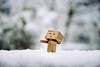 Danbo enjoying snow (Saxena, Anurag) Tags: danbo danboard bokeh white cold winter hoilday christmas ice