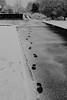 Mes pas neigeux (zuhmha) Tags: bulgarie bulgaria winter hiver line road water snow neige mogilovo pas empreinte