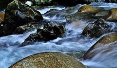 Easter Flow (petejam70) Tags: nature creek water flow stone park power vancouvercanada