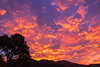 San Luis Obispo (sk4404) Tags: 2017 december sanluisobispo sunrisesunset sunset