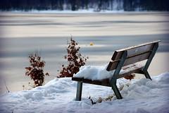 Lonelier (Eibsee, Bayern) (armxesde) Tags: pentax ricoh k3 deutschland germany bayern baviera bavaria eibsee winter see lake water wasser snow schnee tree baum bench bank eis ice