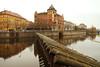 (Yuna Frolov) Tags: yunafrolov suericata photography nature autumn abroad winter europe travel prague republic czech