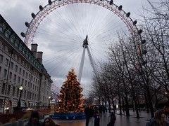 20171216_155206 (andy michael2012) Tags: london eye christmas londoneye wheel pods uk thames londoner londonpop londontown londoncity londonbridge londonlife londonist londonart westminster abbey st pauls cathedral houses parliament pancras renaissance hotel national theatre drapers hall battersea power station the gherkin shard one canada square heron tower leadenhall street cheesegrater officecity crystal palace hsbc scalpel 30 mary axe swiss re building bt bishopsgate