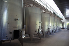 Fermentation tanks (exfordy) Tags: vin