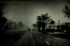The Break of Existence  (Dark Series) (13skies) Tags: darkseries darkness sony topaz creative theme 13skies bleak apocalyptic deadly spooky scary trees roads cars