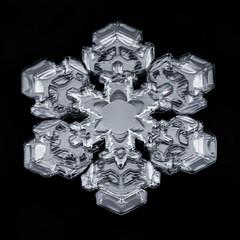 Snowflake-a-Day No. 36 (Don Komarechka) Tags: snowflake snow flake ice crystal nature physics fractal symmetry weather sky meteorology focusstacking macro