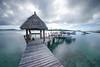 Fiji Islands-198-2016 (Mirosl@v) Tags: cessna leleuvia levuka nadi ovalau pacific paradise sharks suva turtleisland wreck yasawa