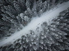 Crossroad (L.Matero) Tags: snow winter high up drone dji mavic pro jyväskylä suomi finland nature white cold day trees forest rural