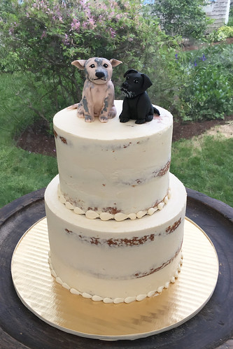 Nearly Naked Wedding Cake with dogs