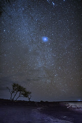 Canopus (Peter Stahl Photography) Tags: laperousebay maui hawaii stars brightest nighskies starrynight canopus star canopusstar