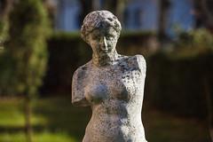 Garden (sugob05) Tags: frühling spring statue venus freiburg 5d mark2 mk ii eos canon tamron 70200mm 28