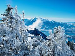Pilatus (torremundo) Tags: landschaften berge winterlandschaften schnee rigikulm schwyz schweiz