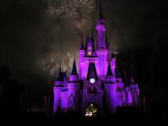 142 (Thaís Letícia Olivo) Tags: disney usa eua orlando florida magickingdom magic kingdom waltdisney night fireworks firework castle princess cinderela