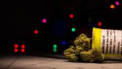 Gorilla Glue (soggymuppet62) Tags: weed kush 420 marijuana cannabis smokeweed blazedit ganja gorilla glue gg gorillaglue macro
