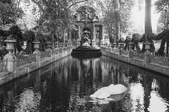 Paris, jardines de Luxemburgo.