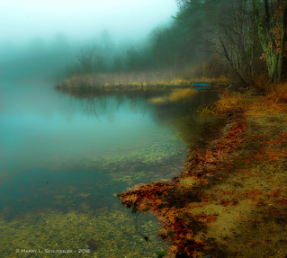 Greenwood Pond In The Fog