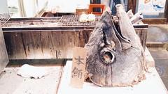 BBQ....上野 (mukramin) Tags: ueno night market bbq barbecue japan fish tuna tokyo tokio asia panasonic lumix dmcgm1 taito 上野 shitamachi uenopark