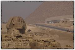 La Gran Esfinge de Kefrén (mariadoloresacero) Tags: vallée valley valle acero mdacero sony ilca68 le caire el cairo piramides piramide pirámide pirámides egypt egypte great gizeh grande sfinx egipto gran esfinge kefrén