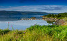 Looking Back (Peter Quinn1) Tags: ardnamurchan glenbeg glenmore lochsunart sunart glenborrodale harbour jetty calm summer scotland morning foxglove grass bay