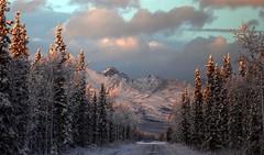 Blush in Winter (Katy on the Tundra) Tags: mountains cathedralmountains winter snow alaska