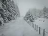 Friday's Fence HFF (CamraMan.) Tags: hff friday fence winter snow bewcastlefells christianburycrags galwegianfosse drifts trees outandabout cumbria foggy cold panasoniclumixtz60 ©davidliddle ©camraman hiking