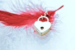 Heart (victoriameyo) Tags: heart feather red flickrfriday shape bright golden small love valentine still life myheartwillgoon heartshaped smileonsaturday