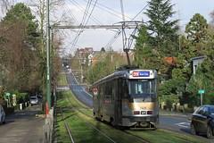 Bruxelles PCCs (DaveAFlett) Tags: tram streetcar strassenbahn belgium belgique belgie pcc brussels