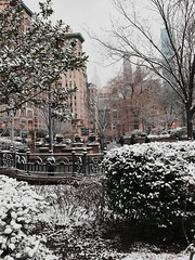 Union Square Park Snow Day (Kamille Vargas) Tags: seeyourcity iamatraveler photooftheday picoftheday photomafia architags shotzdelight park trees grass parklife newyork newyorker newyorknewyork newyorkig newyorklife manhattan manhattanskyline nyc nyclife nycphotographer architecturedesign archilovers architecturephotography architecturelovers iphonephotography iphone iphoneonly iphonegraphy