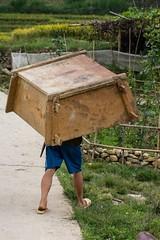 Necky jdou... (zcesty) Tags: vietnam26 domorodci vietnam dosvěta làocai vn