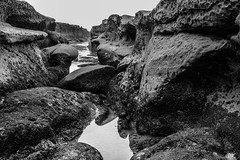 La Jolla Tide Pools, San Diego, March 31, 2017. (R*Pacoma) Tags: places lajollatidepools sandiego california monochrome seaside seascape rock water reflection nikon d7100 sigma 1850