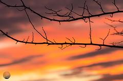 ¿Arde Madrid? (juan_maynar) Tags: atardecer puestadesol sunset sky