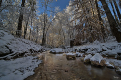 Snow in the South (Karnevil) Tags: usa us unitedstatesofamerica unitedstates northamerica america northcarolina nc raleigh winter icestorm cold freezing snow ice frozen icicle snowflake winterstorminga greenway greenwaytrails capitalareagreenwaytrailsystem 12mm laowa venusoptics sony a7rii a7 rii petekreps slow shutter