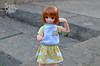 7 (Welt Der Puppen) Tags: dd dollfie dream dynamite dddy blythe blythes azone doll dolls collector anime leone akame ga kill pure neemo