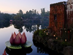 Lotus (MarcBphotos) Tags: flower lotus explore foreign country india lake light sunset reflection trees sky asia