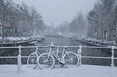 Lonely couple in the winter (B℮n) Tags: bike snow covered bikes bicycle holland netherlands canals winter cold street anne dutch people scooter gezellig cafés snowy snowfall atmosphere colorful walk walking cozy light corner water canal weather cool sunset file celcius mokum pakhuis grachtengordel unesco world heritage sled sleding slee seagull nowandthen meeuw bycicle 1°c sun shadows sneeuw brug slippery glad flakes handheld wind code rood amsterdam umbrella colors keizersgracht 100faves topf100 200faves topf200