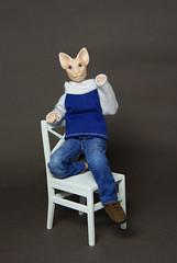 DSC01425 (vulpesAnch) Tags: bjd dollhouse dollminiature bjddoll bjdminiuture artistdoll artbjddoll artdoll catdoll catbjd ooak resindoll resinbjddoll resinbjd