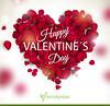 Wishing You Happy Valentine's Day,2018 (trishanakashyap) Tags: expressyourlove valentinesday fernsnpetals valentine2018 loveromance happyvalentinesday