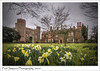 Hodsock Priory (Paul Simpson Photography) Tags: hodsockpriory nottinghamshire bassetlaw robinhoodcounty daffodils flowers history paulsimpsonphotography nature sonya77 february 2018 imagesof tudormanor manorhouse imageof winter photosofnature daffodilphotos redbrick england